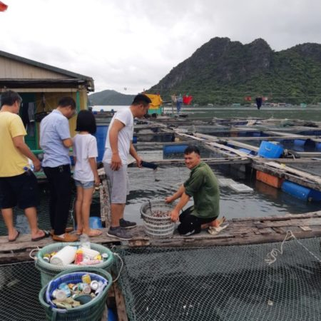 Cho cá ăn tại bè cá NQT